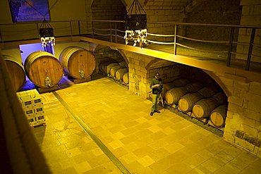 Cellar, Tenute Al Bano Carrisi, Cellino San Marco, Puglia, Italy