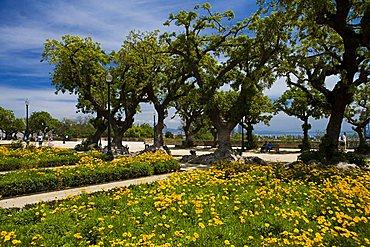 Montjuic park, Barcelona, Spain, Europe