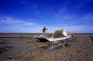 Fisherman, Island of Oleron, Charente-Maritime, France, Europe