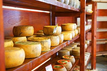 Cheese shop, Sardinia, Italy, Europe