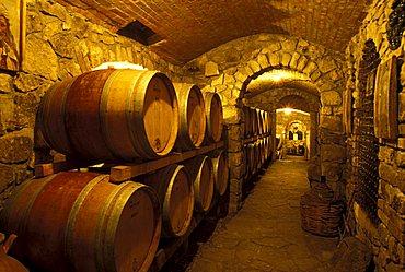 Caggiano cellar, Taurasi, Campania, Italy