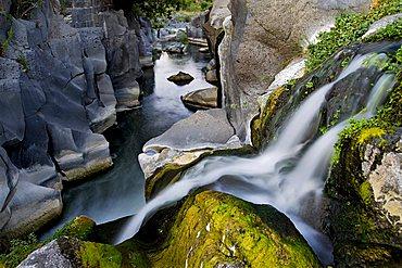 Alcantara river, Catania, Sicily, Italy, Europe