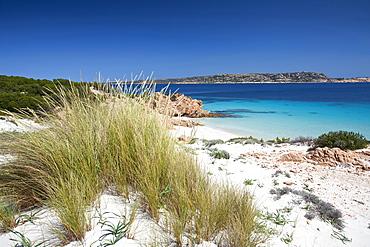 Cala Ciaccaro, Cala Soraia, Isola di Spargi island, La Maddalena (OT), Sardinia, Italy, Europe