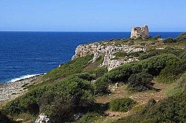 Uluzzo tower, Parco di Porto Selvaggio e Palude del Capitano, Nardv=, Salento, Puglia, Italy