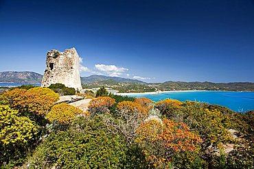 Porto Giunco bay, Villasimius (CA), Sardinia, Italy, Europe