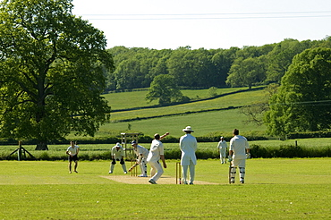 Cricket match, Dindel, Somerset, England, United Kingdom, Europe