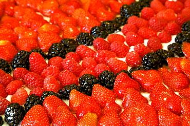 Fruits cake, Trentino Alto Adige, Italy, Europe