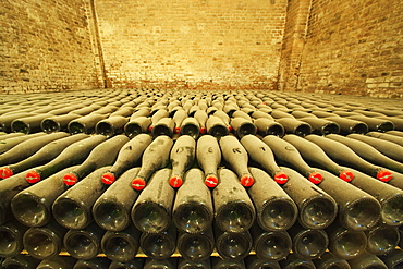 Bosca underground wine cathedral in Canelli,a bed of vintage bottles, Asti, Piedmont, Italy
