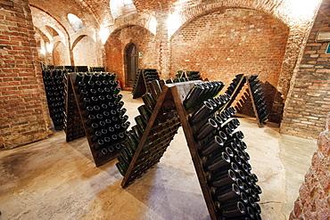 Bosca underground wine cathedral in Canelli, Asti, Piedmont, Italy, Europe