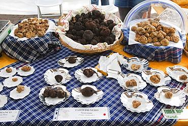Moncalvo National  Truffle Fair, truffles (Tuber magnatum) on sales, Asti, Piedmont, Italy, Europe