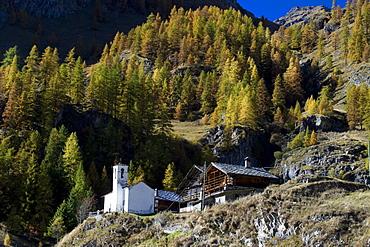 Biel Walser village, Gressoney-La-Trinite, Gressoney Valley, Aosta Valley, Italy, Europe