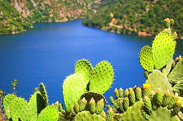 Lake Flumendosa, Villagrande Strisaili, Ogliastra, Sardinia, Italy, Europe