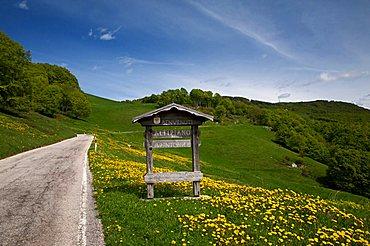 Stretch of mountain road in Plateau of Brentonico, Trentino Alto Adige, Italy, Europe