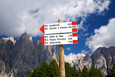 Table path, Catinaccio mountain and Torri del Vajolet, Fassa valley, Trentino Alto Adige, Italy, Europe