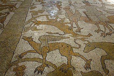 Mosaic, Cathedral, Otranto, Salento, Apulia, Italy