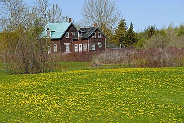 South Coast, Gaspe peninsula, Quebec, Canada, North America