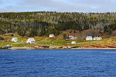 Bonaventure Island, Perce, Gaspe peninsula, Quebec, Canada, North America