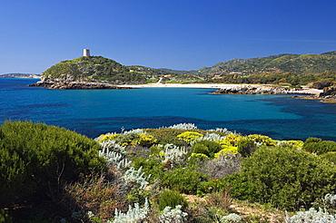 Chia Tower from Su Cardulinu beach, Chia, Domus de Maria, Cagliari district, Sardinia, Italy, Europe