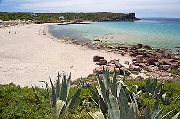 Cala dello Spalmatore, La Caletta beach, Carloforte, St Pietro Island, Sulcis Iglesiente, Carbonia Iglesias, Sardinia, Italy
