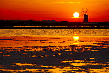 Salt works at the sunset, Trapani, Sicily, Italy, Europe