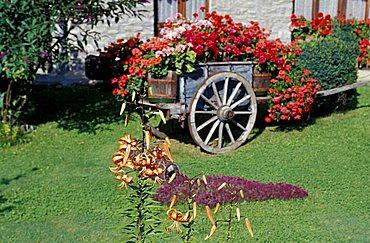 Floral decoration, Trentino Alto-Adige, Italy