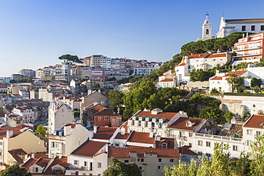 View of a residential district of Lisbon surrounded by trees and church under a blue summer sky, Lisbon, Estremadura, Portugal, Europe