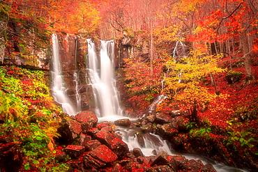 Dardagna Falls in autumn, Lizzano in Belvedere, Emilia-Romagna, Italy, Europe