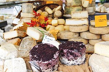 Closeup of Italian cheese with relative price tags at the Moncalvo truffle fair, Moncalvo, Piedmont, Italy, Europe