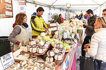 Tourists in front of a cheese vendor at the Moncalvo Truffle fair, Moncalvo, Piedmont, Italy, Europe