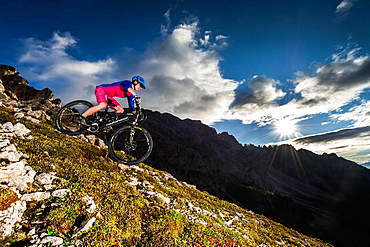 Mountain bikers in action, Carezza, Latemar, Trentino-AltoAdige, Dolomites, Italy, Europe