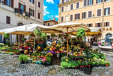 Campo de Fiori square, Flowers,  daily market with the statue of Giordano Bruno in the background, Rome, Lazio, Italy, Europe