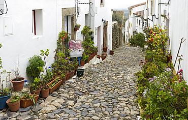 The fomer jewish quarter in Castelo de Vide.  Europe, Southern Europe, Portugal, Alentejo