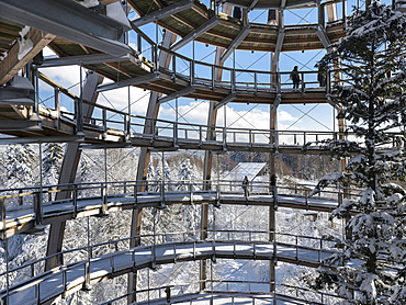 Look out of the Canopy Walkway of the visitor center of the National Park Bavarian Forest (Bayerischer Wald) in Neuschoenau in the deep of winter.    Europe, Germany, Bavaria, January