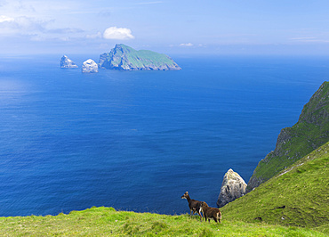 The islands of St Kilda archipelago in Scotland. The island of Hirta, view of Boreray and Stac Lee and Stac Armin. It is one of the few places worldwide to hold joint UNESCO world heritage status for its natural and cultural qualities. Europe, Scotland, St. Kilda, July