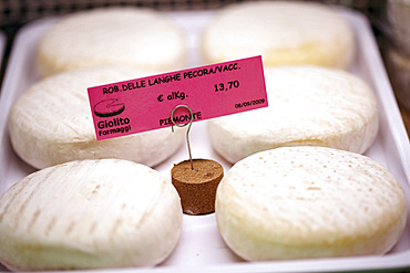 Delicatessen Giolito Formaggi, specialized in typical Piedmontese cheeses, Bra, Piedmont, Italy, Europe