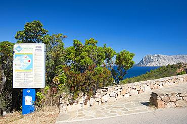 Capo Coda Cavallo, San Teodoro, on background Tavolara Island, Sardinia, Italy, Europe