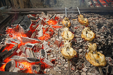 cuttlefish and eels on the spit, typical Sardinia recipe, Campidano, Sardinia, Italy, Europe
