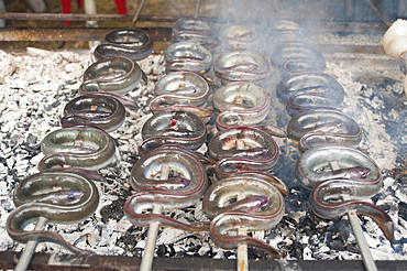 Eels on the spit, typical Sardinia recipe, Campidano, Sardinia, Italy, Europe
