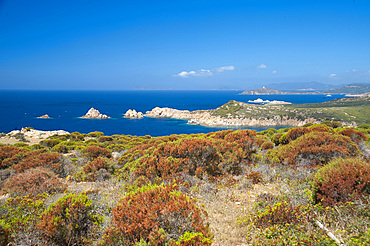 The Coast of Cape Spartivento and Cape Malfatano, Chia, Domus de Maria, Sardinia, Italy, Europe