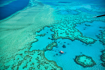 Natural Great Barrier Reef in Queensland. Aerial view of nature paradise with magnificent colors.