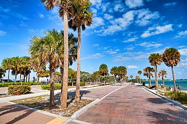 Palms and park along Rickenbacker Causeway, Maimi.