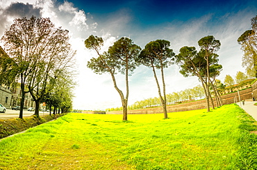 Park of Lucca.