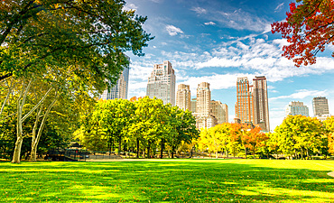 Beautiful foliage colors of New York Central Park.