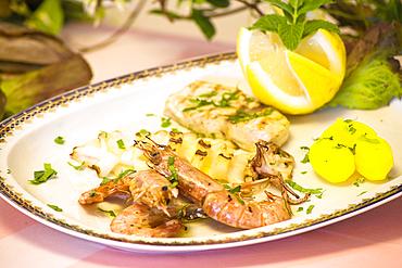 Shrimps, Ischia island, Naples, Campania, Italy, Europe.