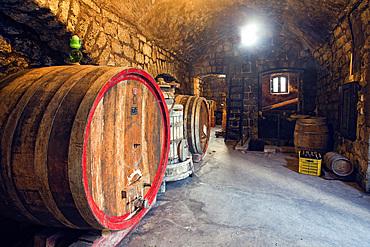 Cantine Pietratorcia winery, Forio d'Ischia, Ischia island, Campania, Italy, Europe