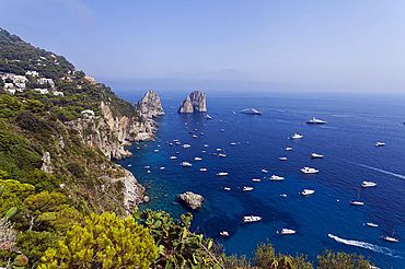 Capri island, Naples, Campania, Italy, Europe.