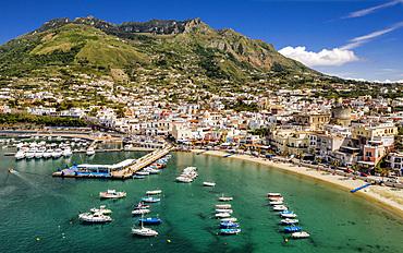 Aerial view, Forio port, Ischia Island, Campania, Italy, Europ