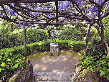 A large pergola of Wisteria Sinensis colors Viale dell'Immenso where we can admire the bronze statue of David, produced by the Neapolitan sculptor Gioacchino Varlese, Villa Cimbrone, Ravello, Amalfi Coast, Campania, Italy, Europe