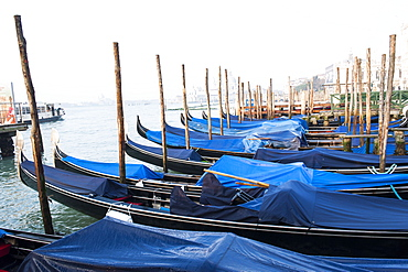 Gondolas near Piazza San Marco in Venice. Venezia, Italy.