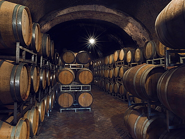 "Ancient wine cellars located inside tufa caves. It is one of the cellars owned by the winery ""Cantine del Notaio"", one of the most important wine producers in southern Italy, Rionero in Vulture, Basilicata, Italy, Europe"